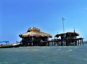 Our first view of Floyd's Pelican Bar