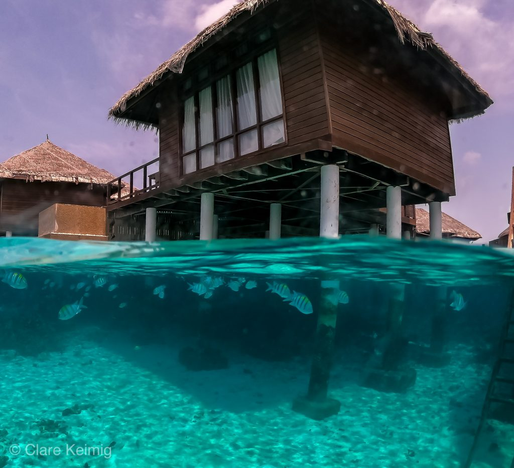 Maldives GoPro Dome Underwater